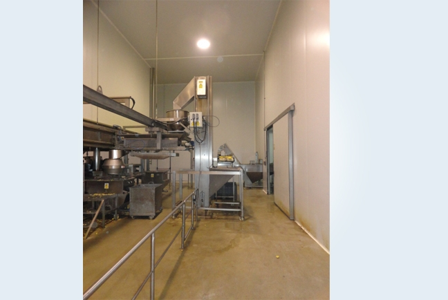 Auxiliary machines for processing potatoes 4